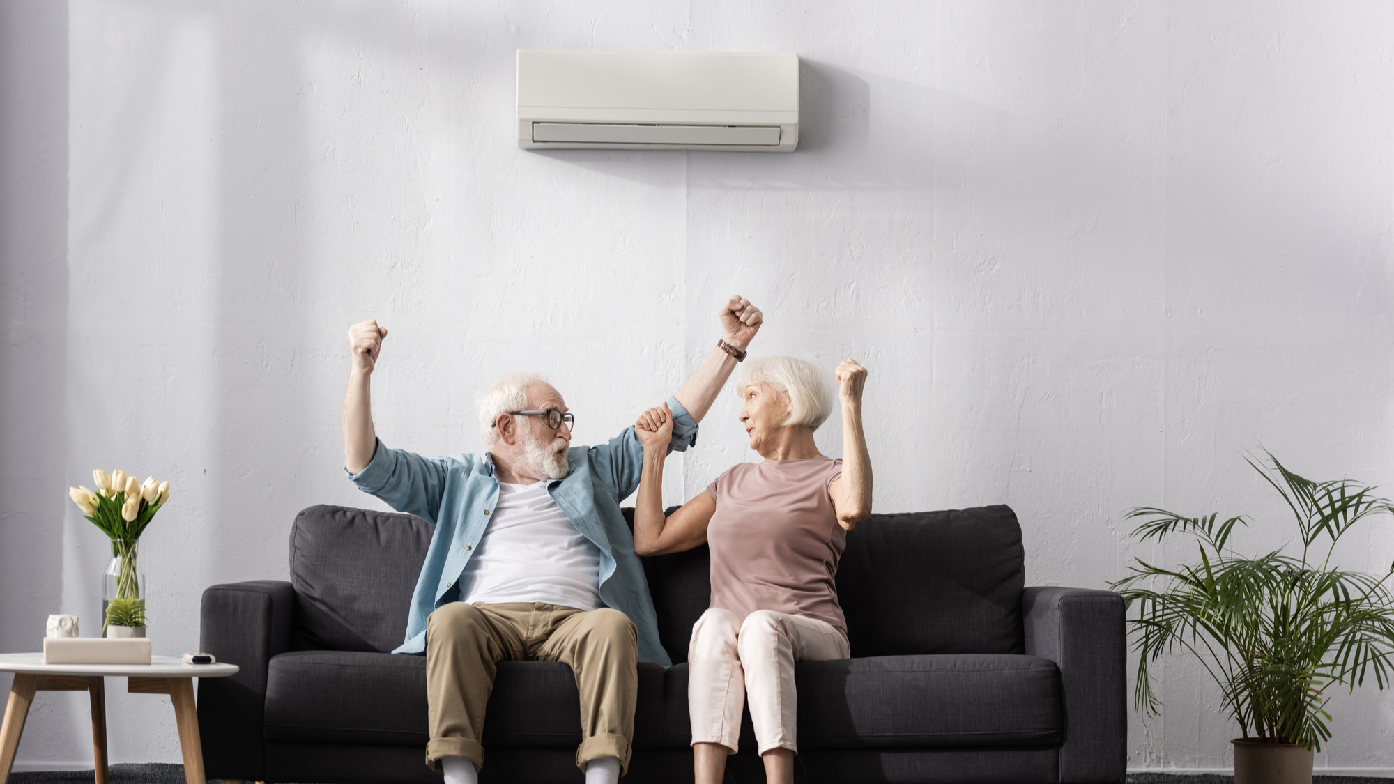 Excited elderly couple in front of their air conditioning system