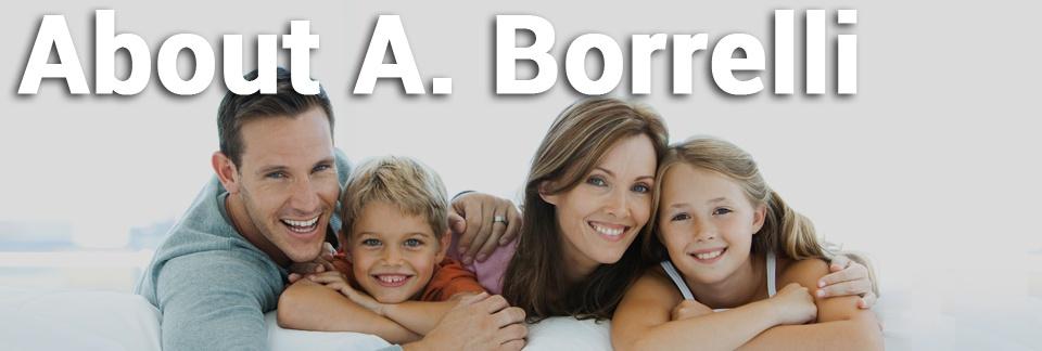 About-A.Borrelli-960x324_.jpg
