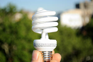 A hand holding an energy efficient light bulb against the backdrop of an urban park.