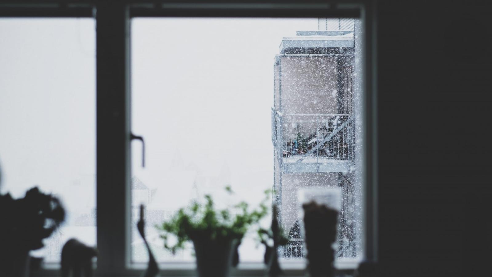 Window Snow